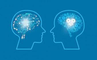 Brain Bee 脑神经科学大赛在线训练营