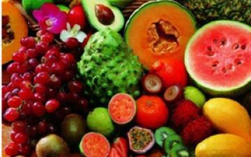 不同基因型果实的营养成分分析