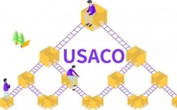 2022 USACO美国信息奥赛线上班(暑期)